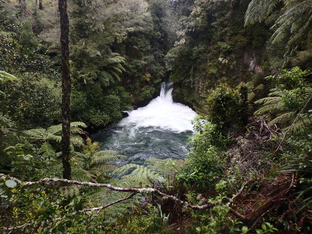 Kitekite Falls.