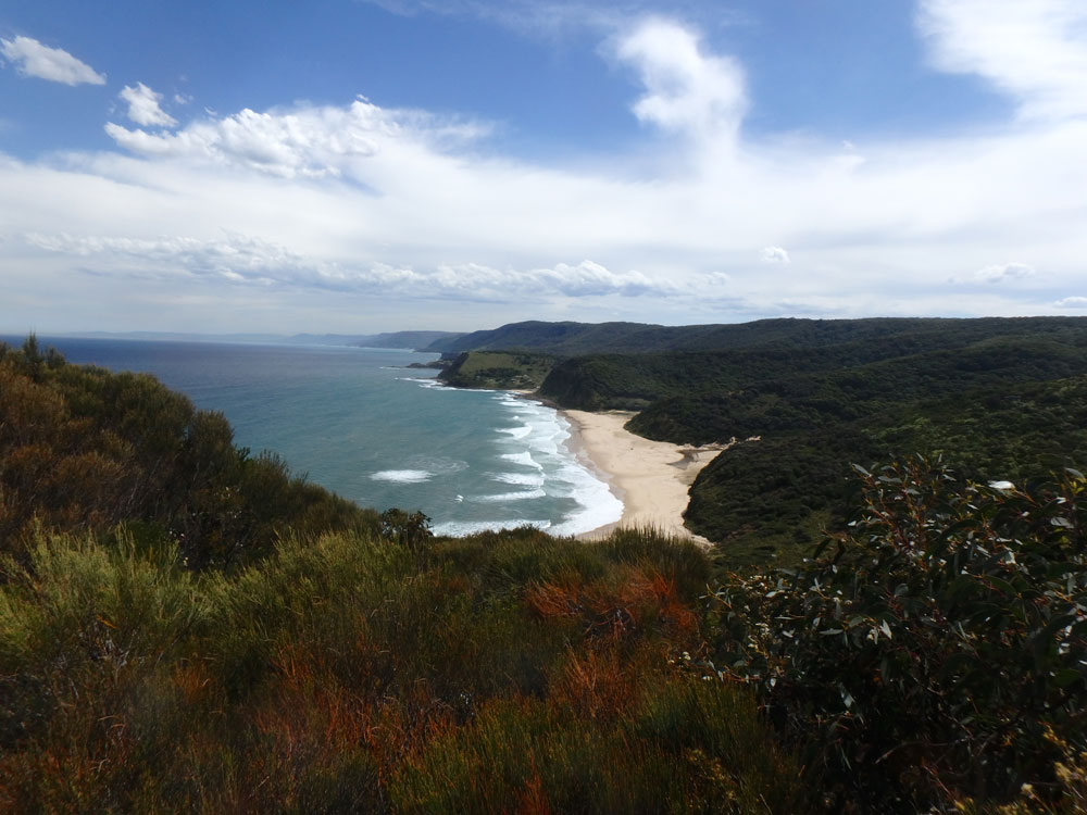 View from Royal National Park, Australia.