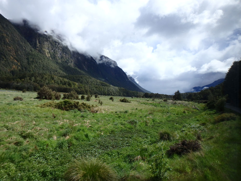 View outside of Milford Sound.
