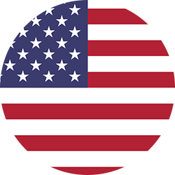 USA Flag Icon.